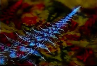 Crestfallen - Dance   Vol. 19 Goa   Fuddy-duddy       DJ SirDragon       .wmv